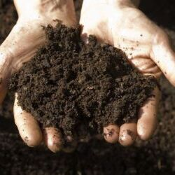 Know the source of your soil.
